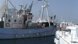 gaza-flotia